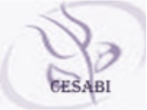logo_cesabi